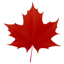 maple leaf clip